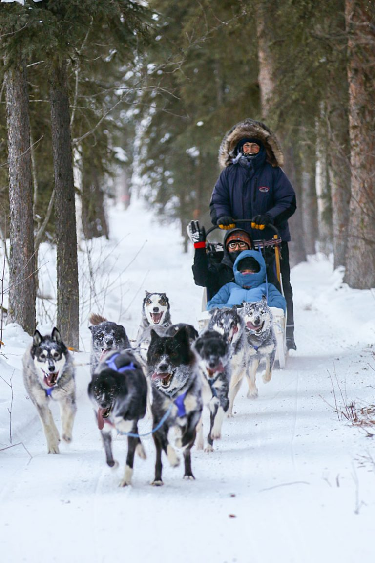 Suomi Hills Kennel offer dog sled rides group demonstrations corporate groups and special ocassion sled dog rides by professional musher Joel Kersting