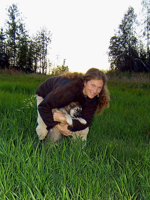Summer Sled Dog Kennel Tours Fairbanks Alaska