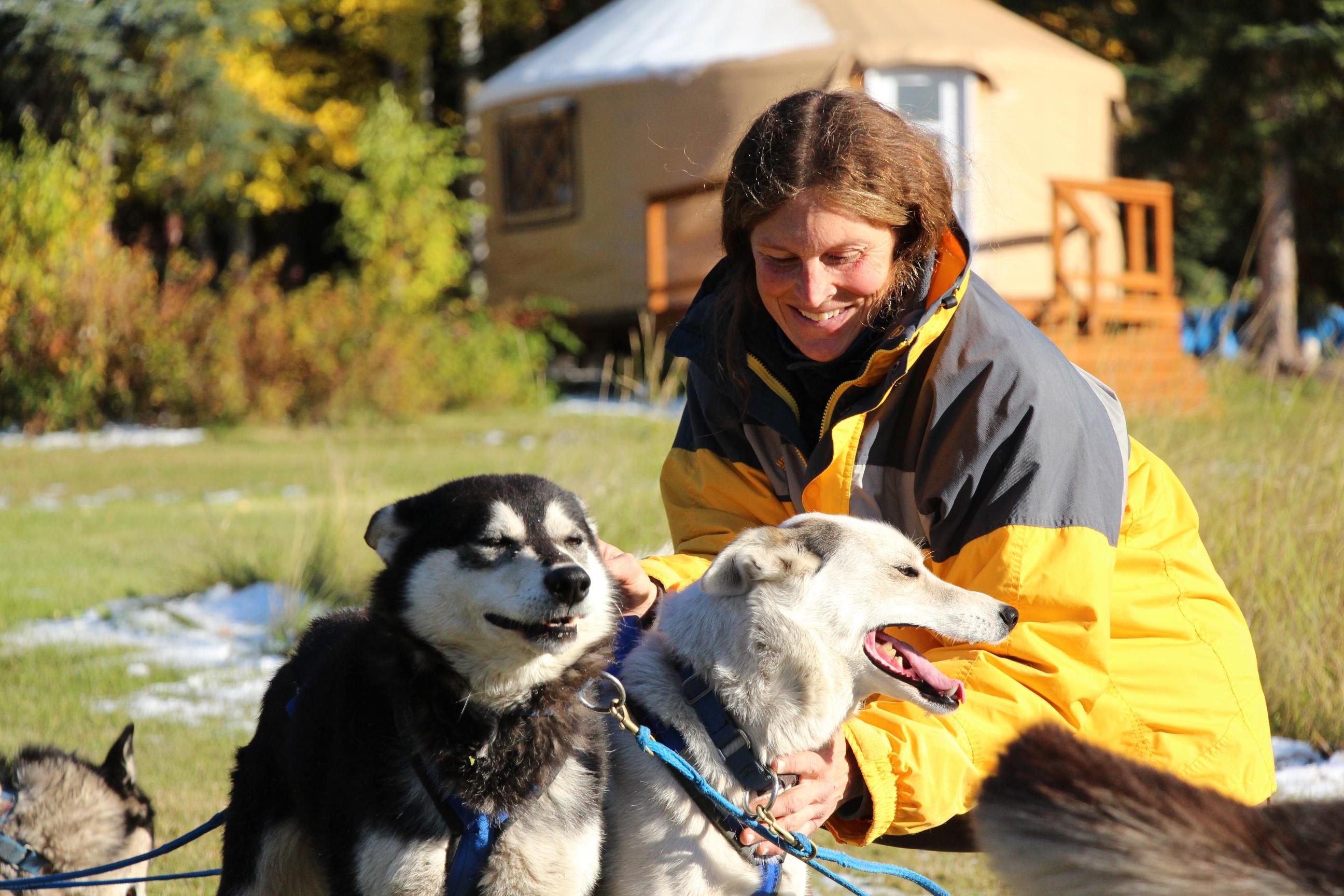 Fall Sled Dog Tours