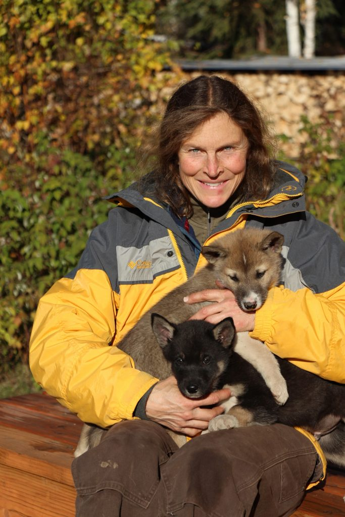 Mushers love their sled dogs