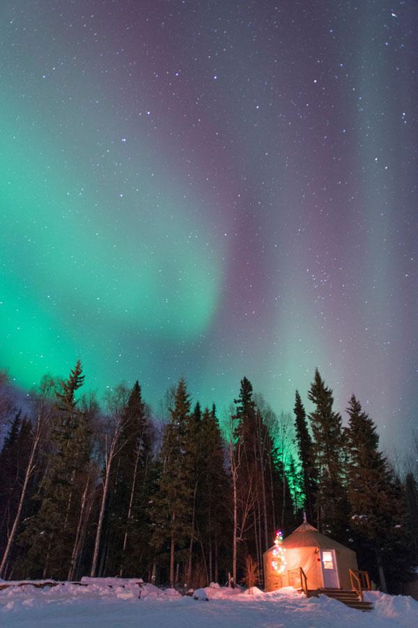 Aurora Viewing Fairbanks Alaska